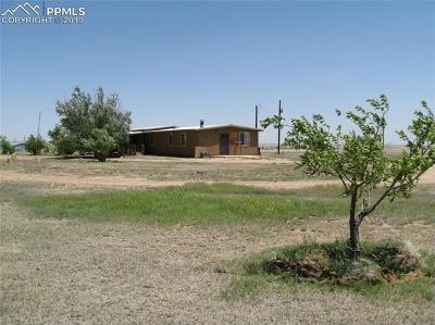 El Paso County Single Family Home For Sale: 33225 Fossinger Road