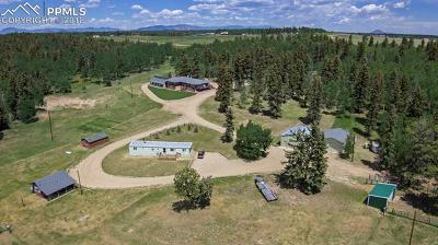 Farm For Sale: 391 County 51 Road