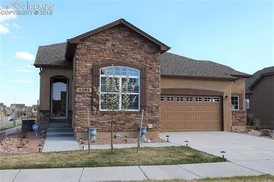 Colorado Springs Single Family Home For Sale: 5595 Cisco Drive