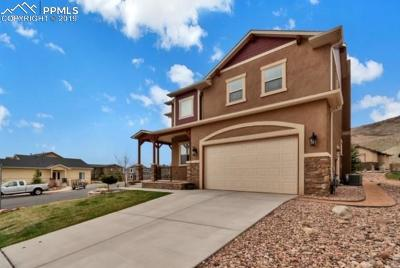Colorado Springs Single Family Home For Sale: 2570 Mirror Lake Court
