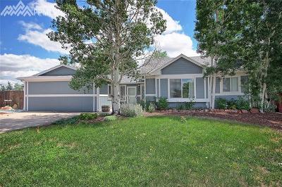 Colorado Springs Single Family Home For Sale: 7010 Crazy Horse Circle