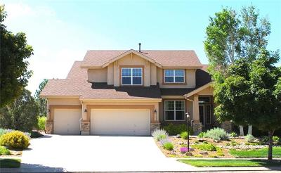 Colorado Springs Single Family Home For Sale: 3171 Deergrass Place