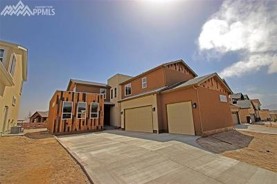 Single Family Home For Sale: 9225 Kathi Creek Drive