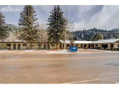 Green Mountain Falls Multi Family Home For Sale: 10370 Ute Pass Avenue