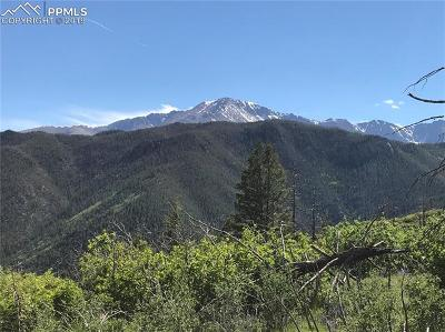 Cascade Residential Lots & Land For Sale: 4201 Pyramid Mountain Road