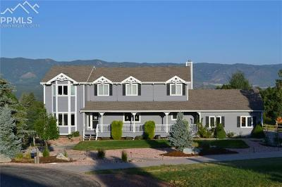 Colorado Springs Single Family Home For Sale: 428 Torrey Pines Way