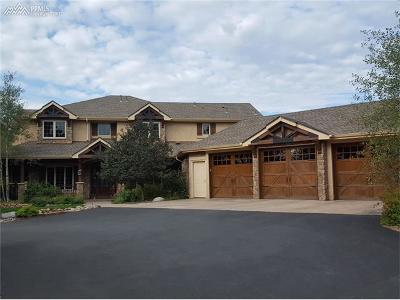 Colorado Springs Single Family Home For Sale: 13580 Lauriston Place