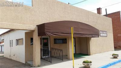 Commercial For Sale: 115 E 5th Street