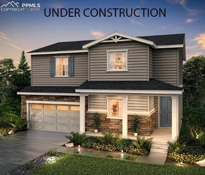 Castle Rock Single Family Home For Sale: 2066 Villageview Lane