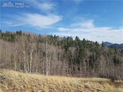 Cripple Creek Residential Lots & Land For Sale: 21 Comstock Court