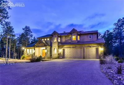 Colorado Springs Single Family Home For Sale: 14470 Old Lasso Point