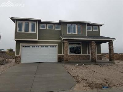 Single Family Home For Sale: 6521 Stonefly Drive