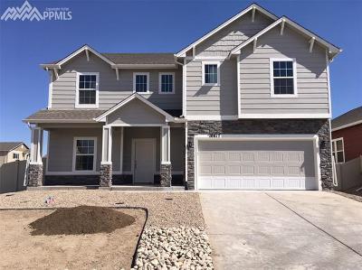 Fountain Single Family Home For Sale: 10817 Hidden Prairie Parkway