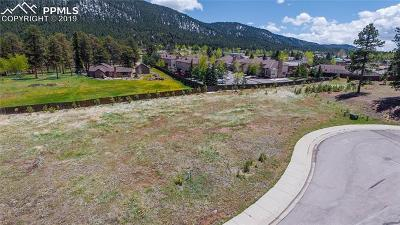 Woodland Park Residential Lots & Land For Sale: 1215 Cottontail Trail