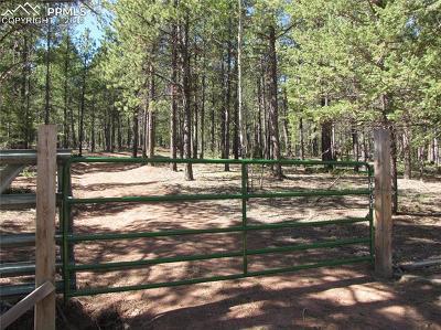 Woodland Park Residential Lots & Land For Sale: 1307 Tbd Windflower Lane