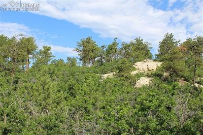 Monument Residential Lots & Land For Sale: 19580 Four Winds Way
