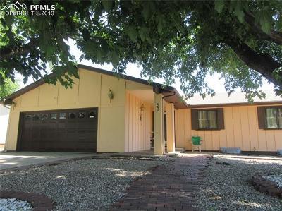 Pueblo Single Family Home For Sale: 93 Massari Road