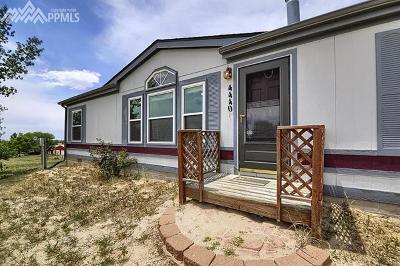 Peyton, Falcon Single Family Home For Sale: 4440 Wileys Road