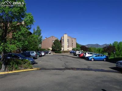El Paso County Condo/Townhouse For Sale: 128 W Rockrimmon Boulevard #301