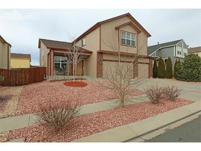Colorado Springs Single Family Home For Sale: 7016 Sungold Drive