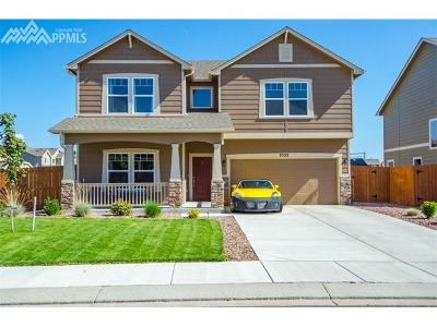 Colorado Springs Single Family Home For Sale: 7522 Calm Oasis Place