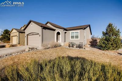 Colorado Springs Single Family Home For Sale: 9907 Paonia Park Place