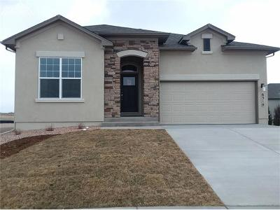 Single Family Home For Sale: 6310 Rowdy Drive