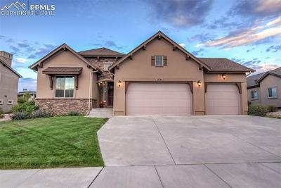 Colorado Springs Single Family Home For Sale: 2034 Turnbull Drive