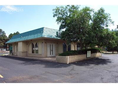 Colorado Springs Commercial For Sale: 3980 E San Miguel Street