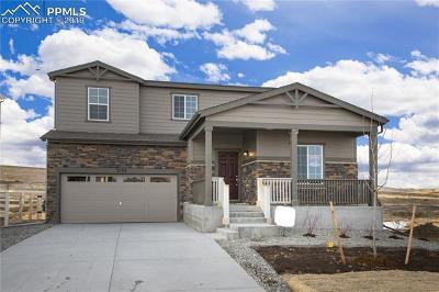 Castle Rock Single Family Home For Sale: 2103 Villageview Lane