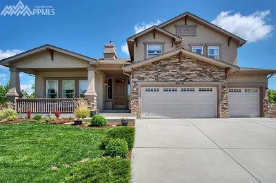 Flying Horse Single Family Home For Sale: 2072 Diamond Creek Drive