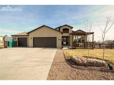 Peyton Single Family Home For Sale: 8520 Copenhagen Road