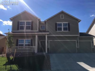 Single Family Home Under Contract - Showing: 7032 New Meadow Drive
