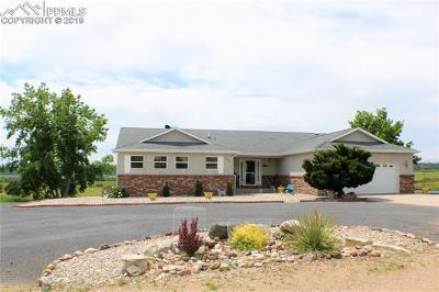 Colorado City Single Family Home For Sale: 4290 Mustang Drive