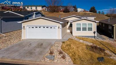 Colorado Springs Single Family Home For Sale: 7654 Crested Jay Point