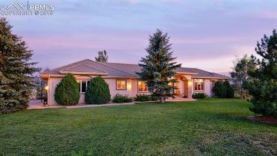 El Paso County Single Family Home For Sale: 19773 Kershaw Court