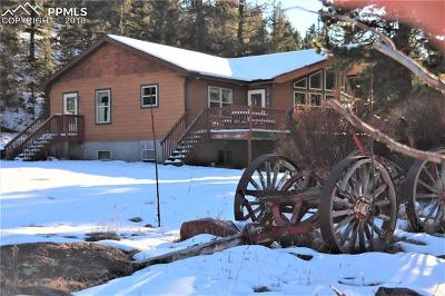 Cripple Creek Single Family Home For Sale: 923 Nickel Plate