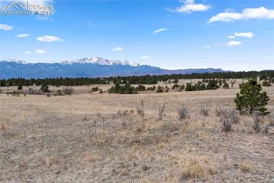 Colorado Springs Residential Lots & Land For Sale: 9118 Nature Refuge Way