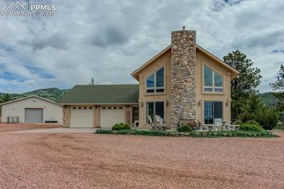 Single Family Home For Sale: 2235 Autumn Creek Drive