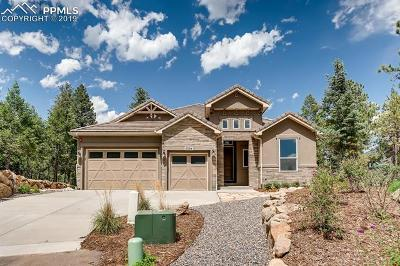 Colorado Springs Single Family Home For Sale: 5394 Old Star Ranch View