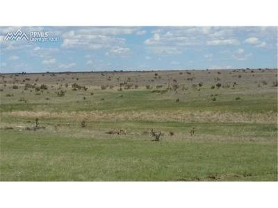 El Paso County Residential Lots & Land For Sale: Water Barrel View
