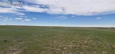 Peyton Residential Lots & Land For Sale: 8478 Buckskin Ranch View