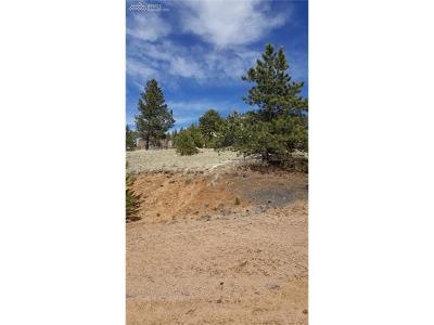 Florissant Residential Lots & Land For Sale: 63 S Pinon Circle