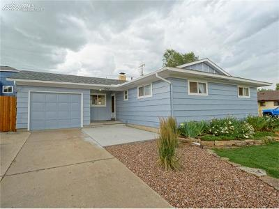 Colorado Springs Single Family Home For Sale: 1009 Evergreen Drive