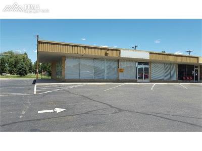 Commercial For Sale: 3123 N Hancock Avenue