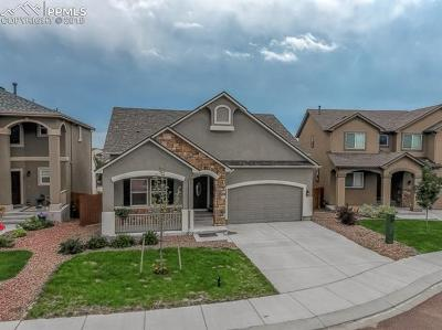 Colorado Springs Single Family Home For Sale: 7525 Shallow Brooke Place