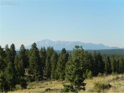 Woodland Park Residential Lots & Land For Sale: Tbd Being Verified Road