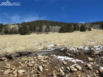 Cripple Creek Residential Lots & Land For Sale: Tbd Rhyolite Mountain