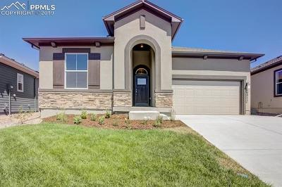 Colorado Springs Single Family Home For Sale: 10052 Prima Run Place