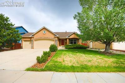 Peyton Single Family Home For Sale: 12238 Sleeping Bear Road